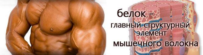 Питание для набора массы Тренировки и питание Питание
